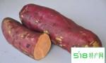 薯类可代谢袪除多余脂肪