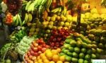 哪些食物中含有的维生素d数量最多?