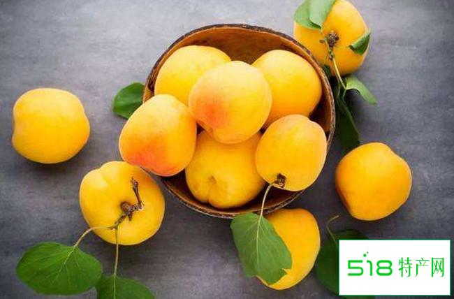 黄贵妃油桃
