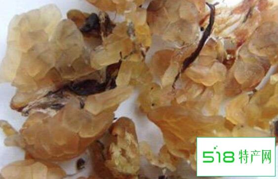 雪蛤酒的功效与作用及副作用