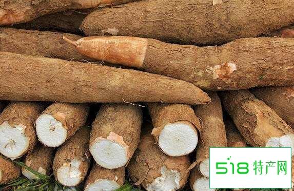 木薯的功效与作用 木薯的食用方法