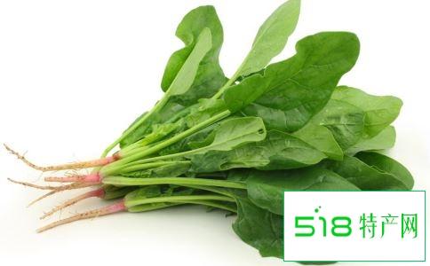 春季养生吃什么 春季养生蔬菜有哪些 春季养生吃什么蔬菜好