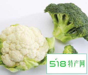 白色西兰花菜