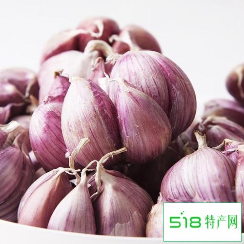 乐都紫皮大蒜