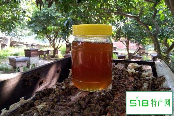 痛风可以吃蜂蜜吗?尿酸高能吃蜂蜜吗?