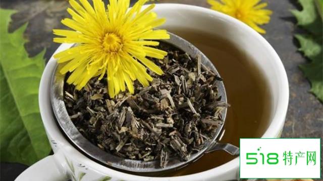蒲公英茶对女性的作用
