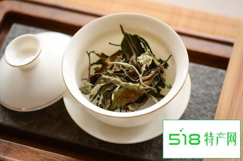 云南大白茶