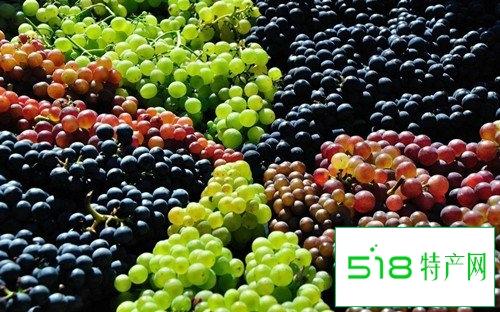 秋季多吃葡萄降低有害胆固醇