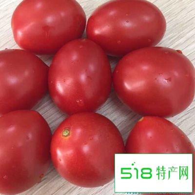 番茄是自然界中很强的抗氧化剂了