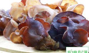 新鲜黑木耳是这样长出来的,晒干后也可以做成新鲜脆爽的美食