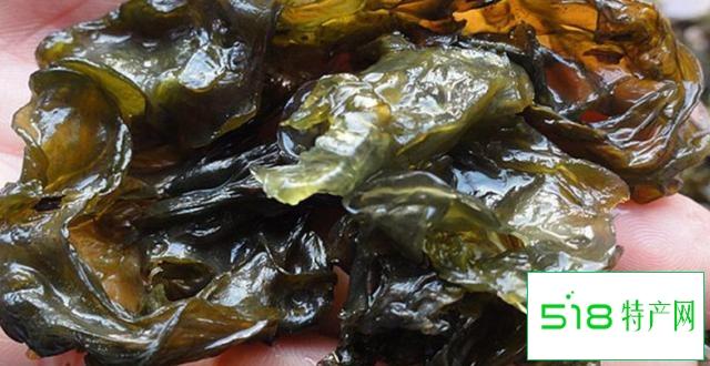 湖北仙桃地皮菜,你知道的有多少?