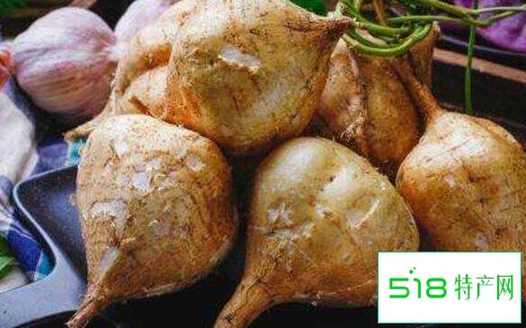 豆薯的作用与功效 豆薯的禁忌
