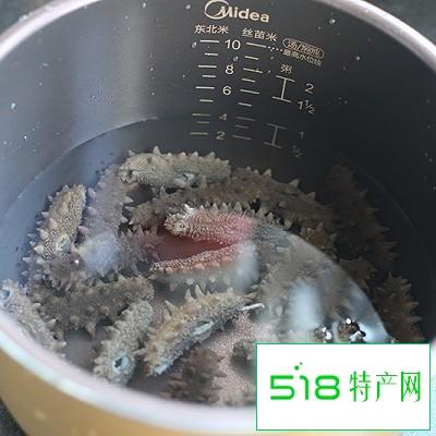 如何泡发海参的做法